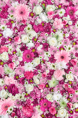 Flower wall background