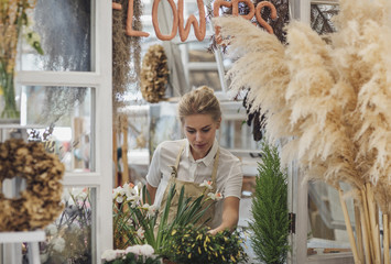 Woman Florist Working at Her Flower Shop