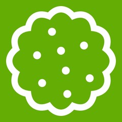 Cookies icon green