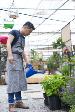 One young asian male florist working in his shop or garden