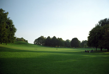 Green hill in the park