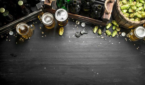 Beer background. Fresh beer and ingredients.