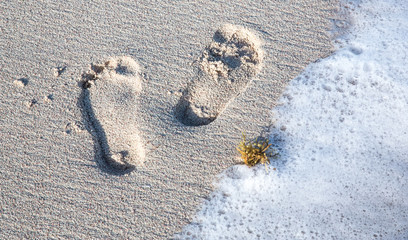 Footprints and Sea Water on a Sandy Beach
