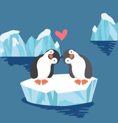 Penguin couple in love on ice floe
