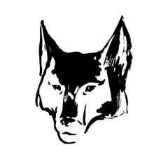 Hand drawn wolf's head. Black vector forest predator image on white background. Sketch animal illustration.