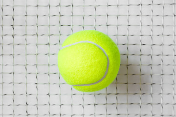 Tennis ball on the racket grid
