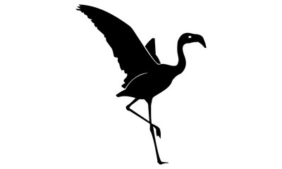 stylish flamingo silhouette