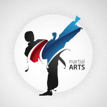 karate kick silhouette splash martial arts