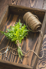 Top view of the bunch of fresh arugula in a wooden box. Dark wooden background. Toned photo. Shallow depth of the field.