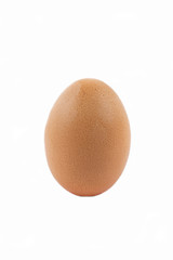 Chicken egg on a white background