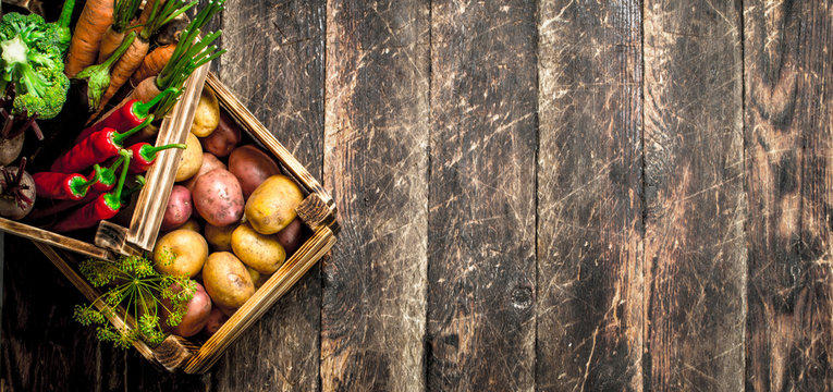 Organic food. Harvest of fresh vegetables in old boxes.
