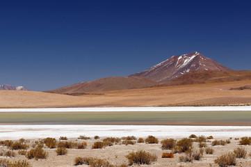 Bolivia desert landscape