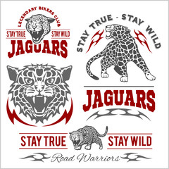 Jaguar custom motors club t-shirt vector logo on light background. Wild animals - vector set.