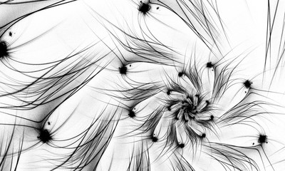 Black and white fractal. Fractal art background for creative design. Decoration for wallpaper desktop, poster, cover booklet. Abstract wallpaper. Psychedelic. Print for clothes, t-shirt.