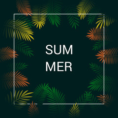 Background Summer Tropical Leaves Vector Design.
