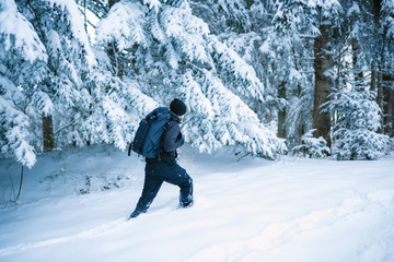 Man walks alone in the snow with forest in background - French Alps