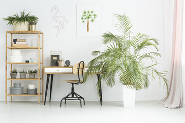 Workspace with plants