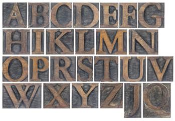 isolated alphabet in wood type