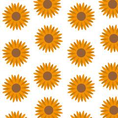 Isolated sunflower design