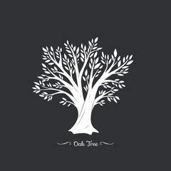 Oak tree. Nature. Vector silhouette illustration Organic food