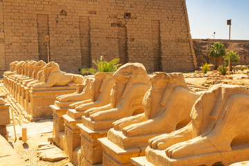Ancient statues of Ram-headed sphinxes in Karnak temple, Luxor