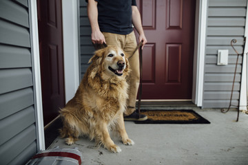Low section of man with Golden Retriever standing at doorway