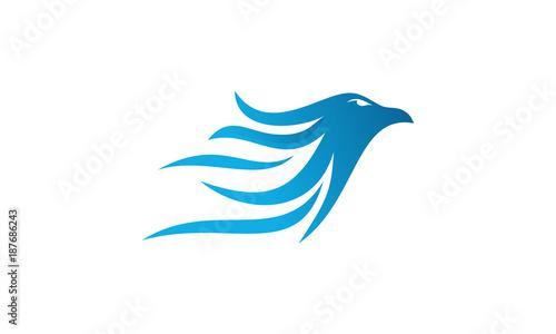 """""""flying eagle logo designs, Falcon logo template designs ..."""