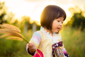 Korean little girl wearing a Traditional Hanbok in nature on sunset time