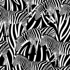 Zebra on abstract background, seamless pattern. Black and white, wild animal texture. design trendy fabric,  vector illustration.