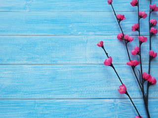 Small pink blossom flowers on blue wood background