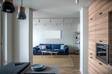 Hall in modern style