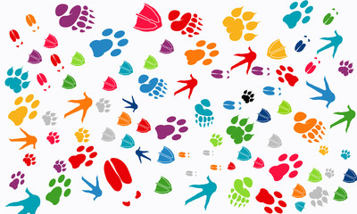 Various Animal Footprint Wallpaper texture, Deer foot, Swan foot,  Tiger Foot, Chicken foot print, Dog foot print vector