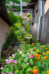flowers in a traditional japanese street