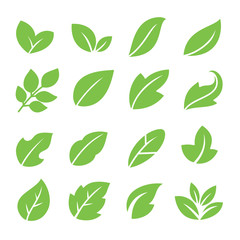 Leaves icon set. Collection of leaf logo design for green, eco, organic, food, beauty, health care brand identity. vector illustration .