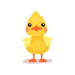 Cute little yellow duck chick character cartoon vector Illustration