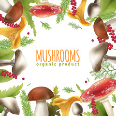 Mushrooms Frame Realistic Background Poster