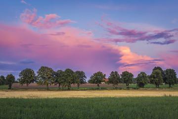 Pink evening sky over fields near Gizycko town, Masuria region of Poland