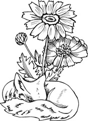 Black and white fox pattern. Illustration of a fox with flowers