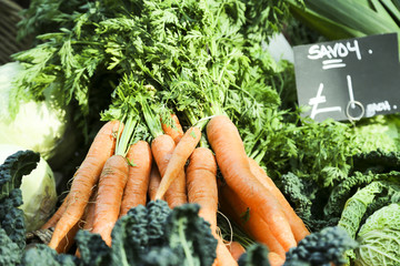 Fresh carrot on farmers market