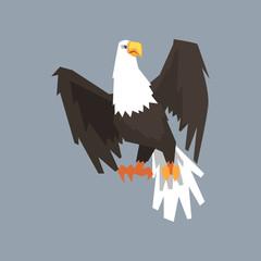 North American Bald Eagle, symbol of USA vector illustration