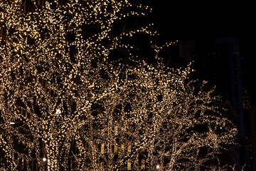 Fototapete - Background with christmas decoration trees in the New York