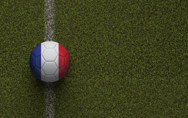 France flag football on a green soccer pitch. 3D Rendering