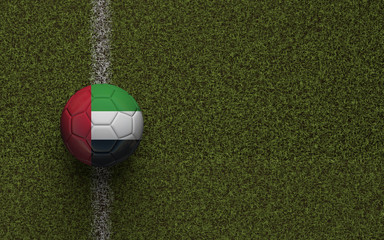UAE flag football on a green soccer pitch. 3D Rendering