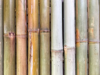 bamboo wall background wallpaper brown garden line jungle natural old decoration