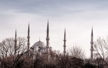 Beautiful Blue Mosque Istanbul