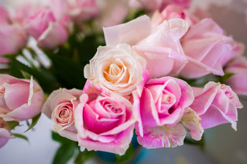 Bouquet of roses Pink Background blur Valentine