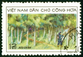 Ukraine - circa 2018: A postage stamp printed in Vietnam shows A forestry employee observes the forest. Series: Forestry. Circa 1968.