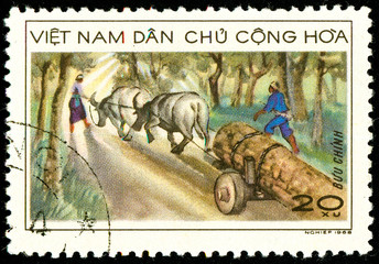 Ukraine - circa 2018: A postage stamp printed in Vietnam shows Transportation of wood by carts with bulls. Series: Transport. Circa 1968.