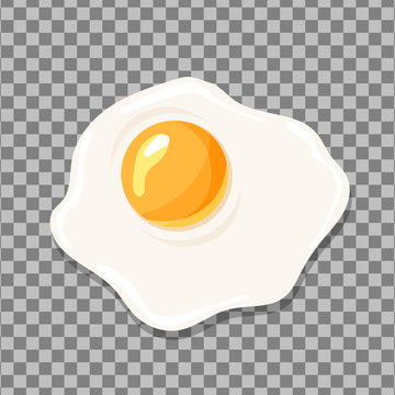 Fried egg isolated. Egg vector icon