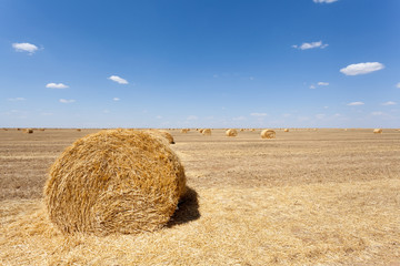 Endless fields of hay bails
